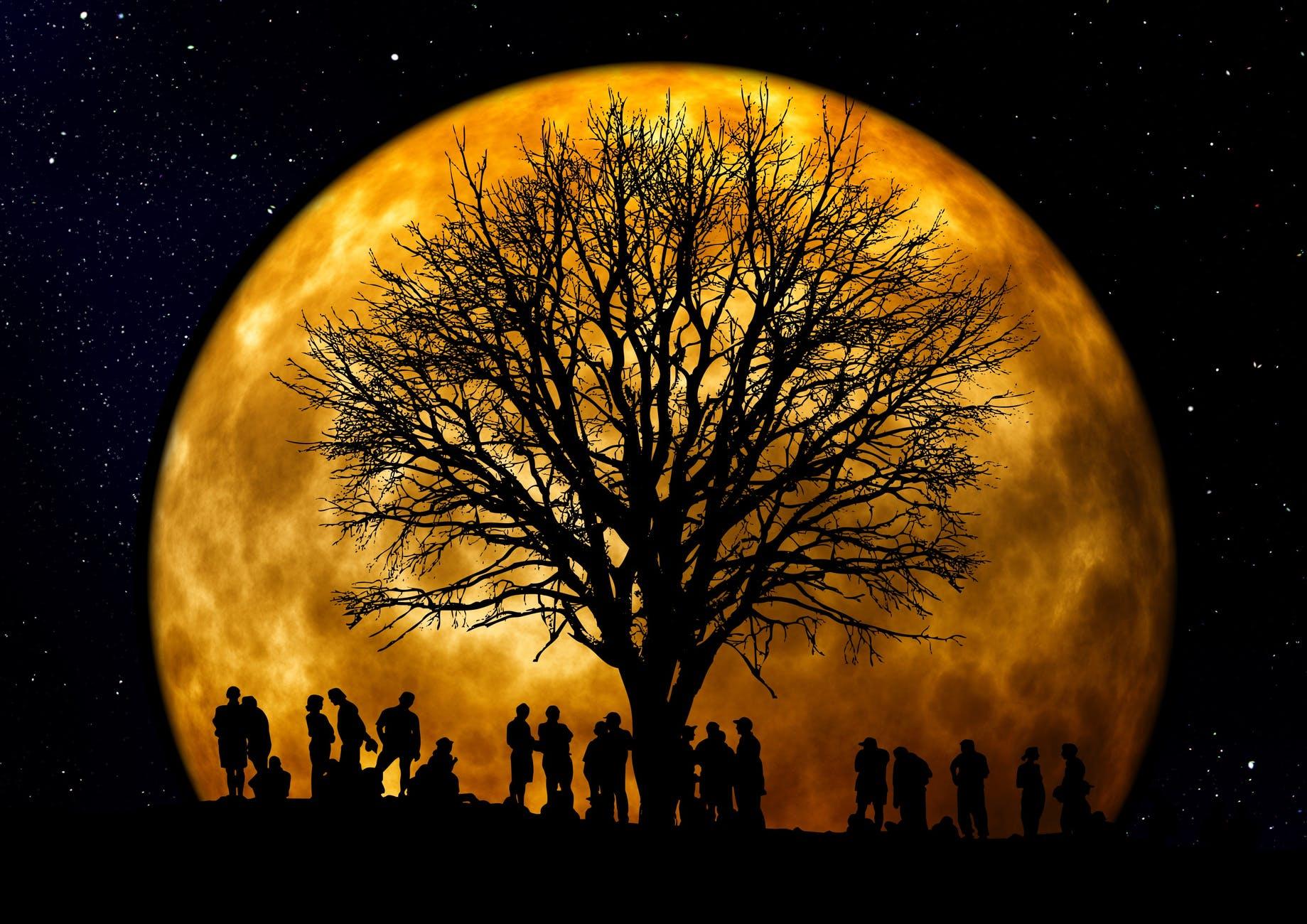 Qu'est-ce qu'une constellation familiale?